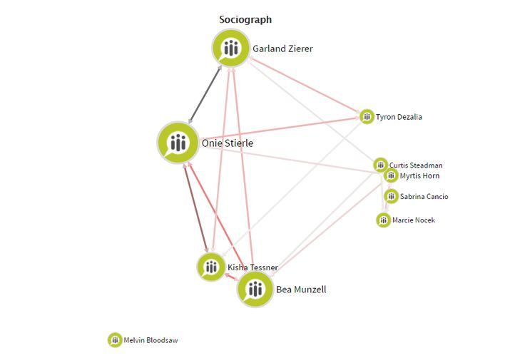 Sociogram shows oversized team, you can see a lot of quite isolated team members on the right and one fully isolated team member is showed at the bottom