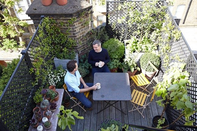 Balcony Garden Ideas | Small City Gardens | Garden Ideas  (houseandgarden.co.uk