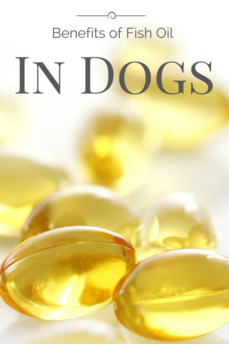 11 best apoquel images on pinterest allergies pets and for What are the benefits of fish oil