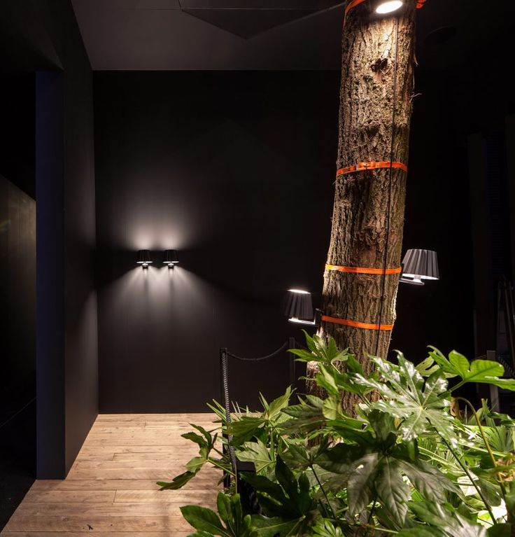 Lights that can slot into the ground or be strapped around tree trunks feature in this lighting collection created by designer arik levy for delta light