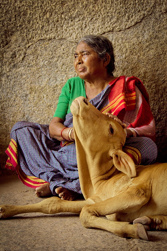 Découvrez l'Inde sous toutes ses couleurs! http://voyage-photographique.com