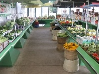 Our Market in the heart of the Season!