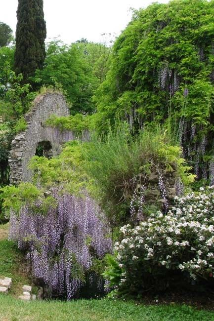 524 Best Images About Wisteria Cottage On Pinterest
