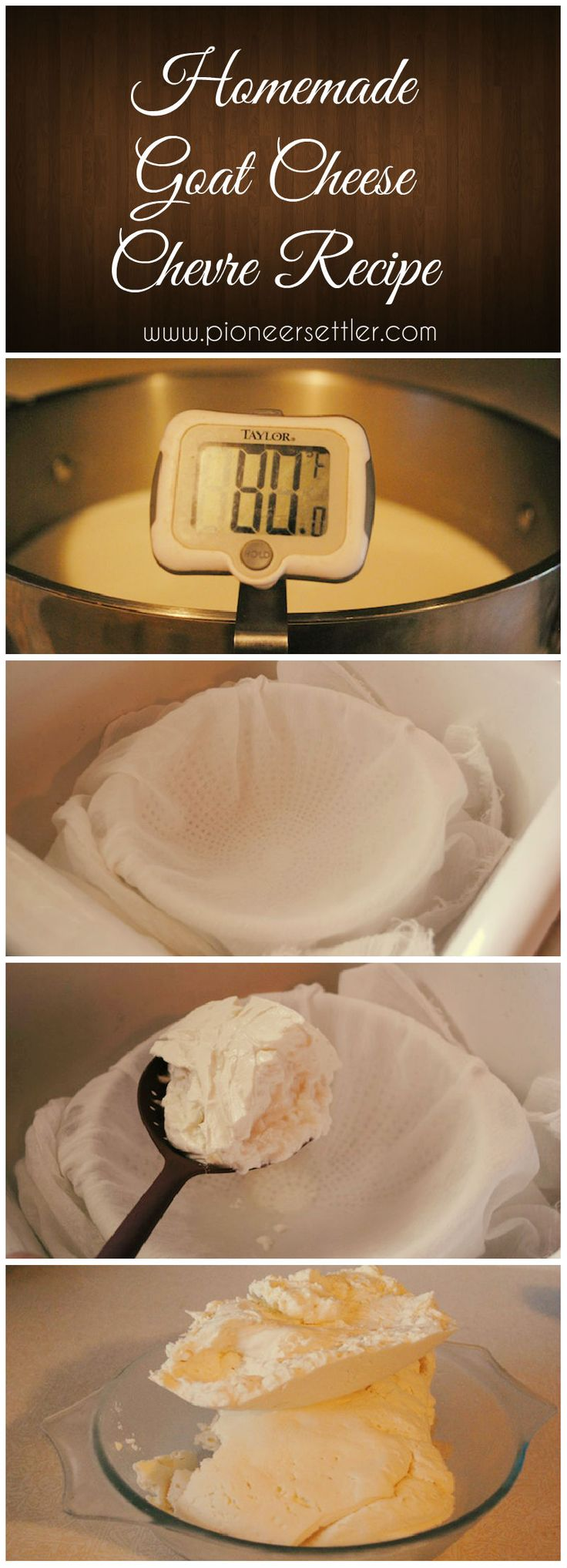 Homemade Goat Cheese : Chevre Recipe | Save money and make your own cheesy recipe at home using Goat's milk. #pioneersettler