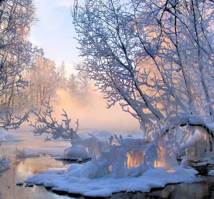 картинки снежная волшебная зима фотографы стараются