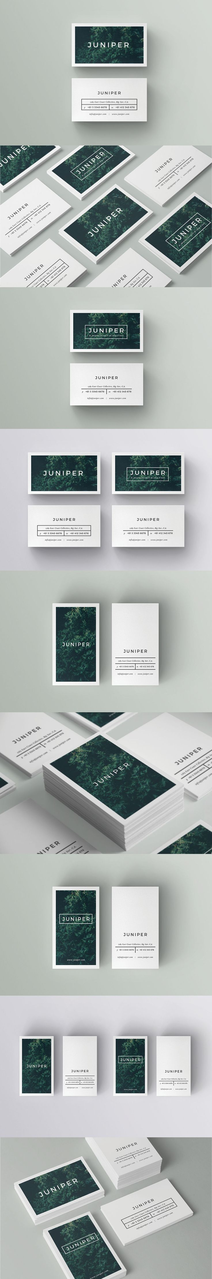 A Beautiful Multipurpose Business Card Template INDD, PSD