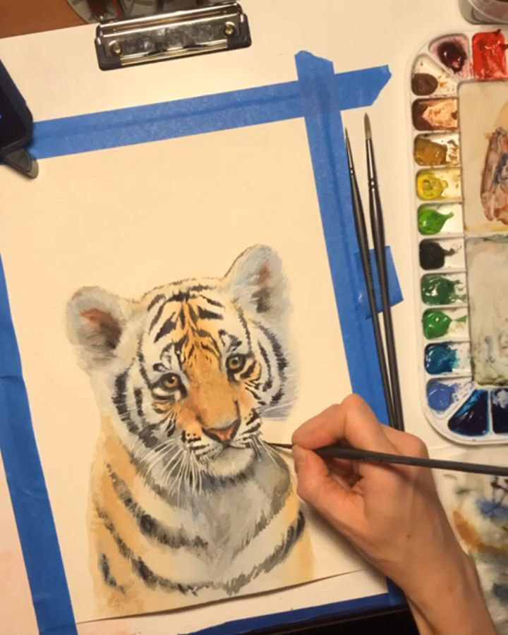 A watercolor time lapse of my baby tiger painting