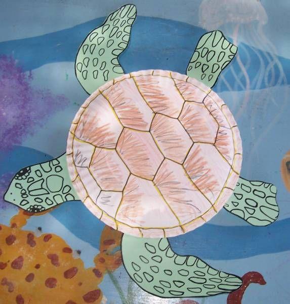 Build Your Own Sea Turtle   Sea Turtle, Inc