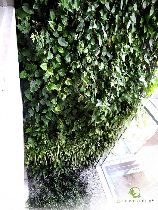 Zielona ściana w biurowcu Oxygen Park Warszawa - lipiec 2014