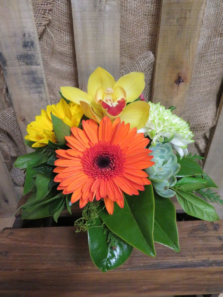 Cute table arrangement made into a terracotta pot. Lovely colours to brighten up a room. Created by the team at Florist ilene