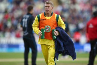 David Warner was banned after punching England's Joe Root in a bar