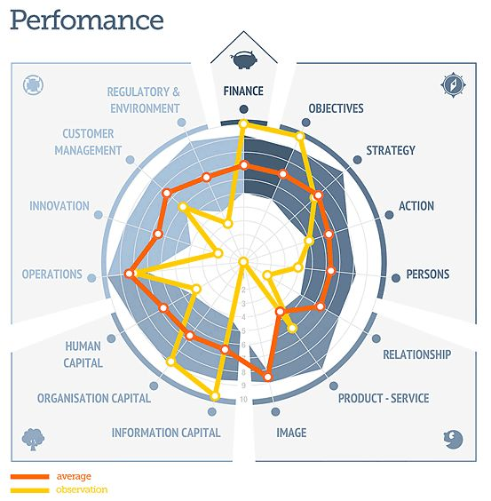 The ValuePerform Analysis generates a set of spider webs showing:  Importance: How well are your priorities aligned with your strategy? Perfomance: How well are you actually performing on the critical issues? Potential: Identification of those areas where you MUST improve to    execute your strategy successfully?