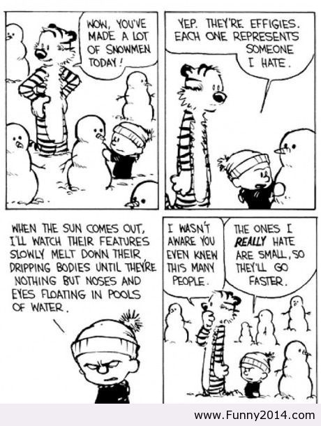 91 Best Images About Calvin And Hobbes On Pinterest Calvin And Hobbes Comics Benjamin