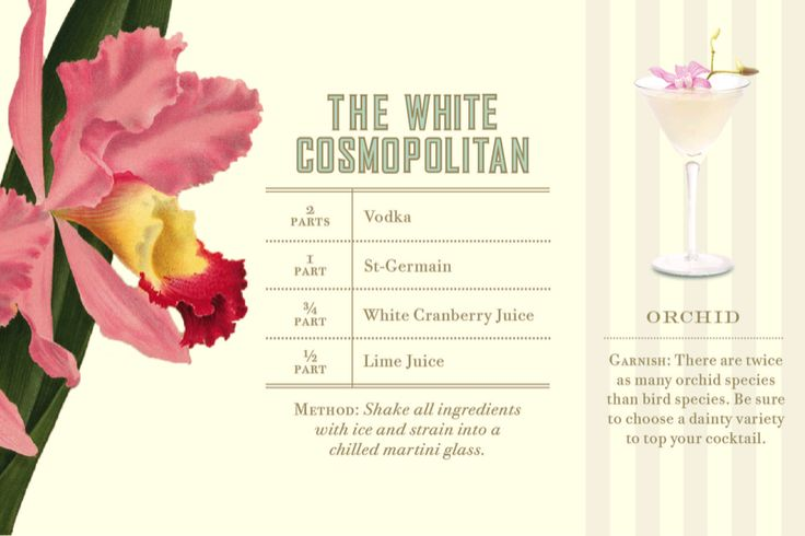 the white cosmopolitan | party | Pinterest
