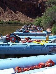 Colorado River Discovery - Page, AZ - Kid friendly activity reviews - Trekaroo