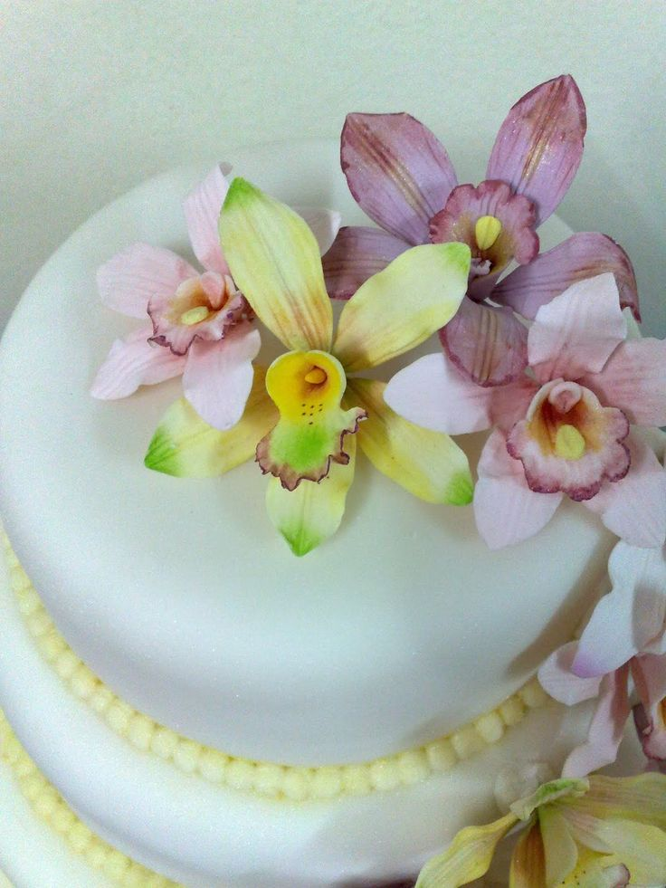 17 best images about cake decorating orchids on for Orchid decor