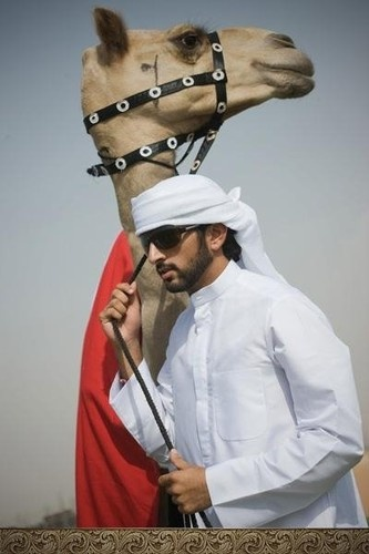 Hamdan bin Mohammed bin Rashid Al Maktoum is the  Crown Prince of Dubai. He is popularly known as Fazza, the name under which he publishes his poetry.