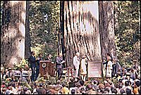 Dedication of Lady Bird Johnson Grove in Redwood National Park, California, 08/27/1969