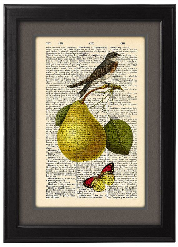 Pear with butterfly and bird, Fruit Dining Room Kitchen Home Decor, Gift poster, Dictionary Page, Vintage Wall Decor, CODE/181