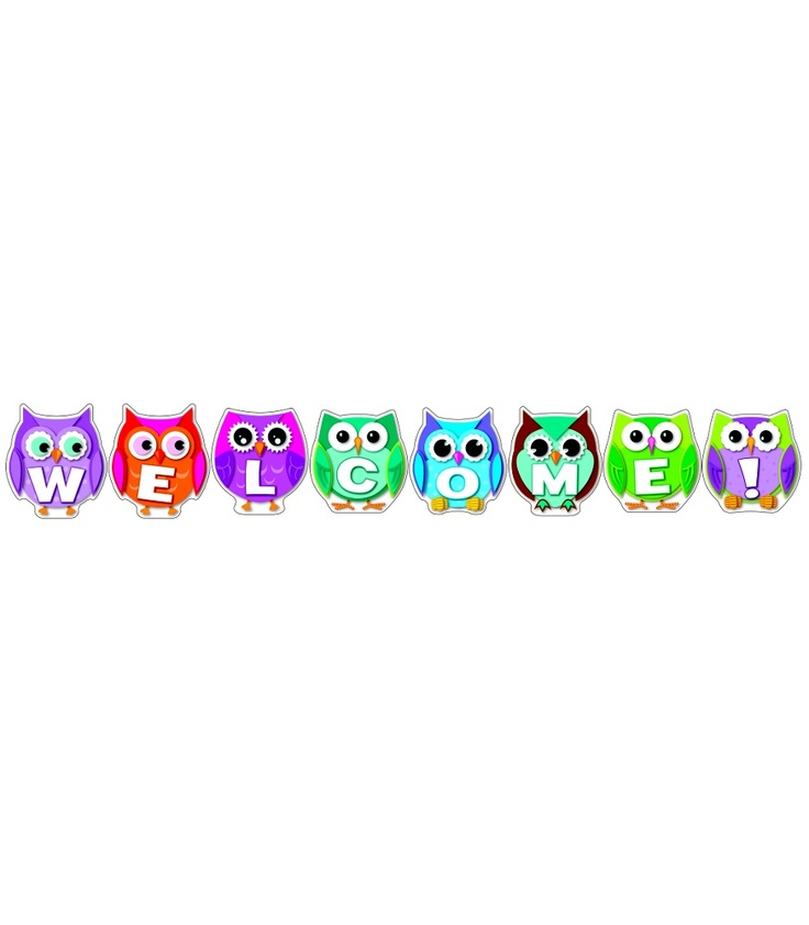 #CDWishList Colorful Owl Welcome Bulletin Board Set - Carson Dellosa Publishing Education Supplies