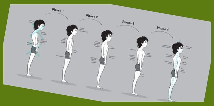 Bony to Beastly Ectomorph Transformation Phase Descriptions | Famous Ectomorph Bodybuilders |…