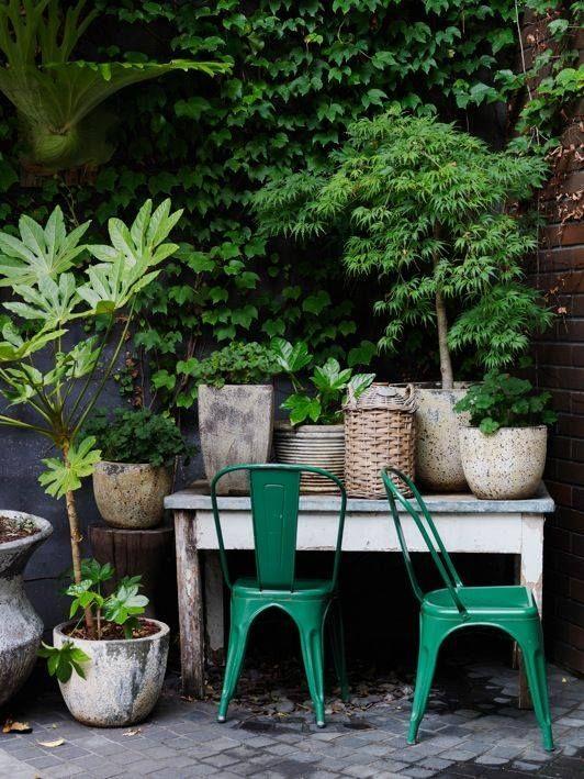 1000 id es propos de jardins d 39 herbes suspendus sur for Petit jardin interieur