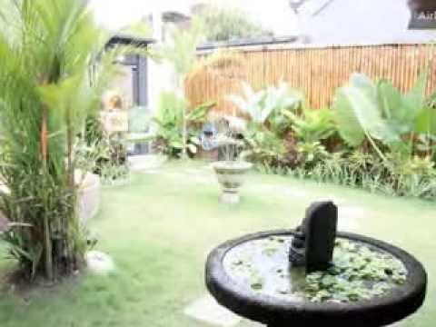 New York Plantings Garden Designers NYC video Bamboo Images http://www.newyorkplantings.com
