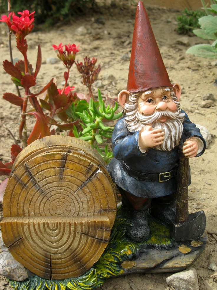 Exceptional Wooden Coaster Holding Gnome. Outdoor DecorationsGarden ...
