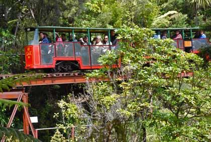 Driving Creek Railway & Potteries. Passengers on the Linx enjoying the ride through New Zealand's native bush. Privately owned trains, train-tracks and land. Amazing views at the top of the track! So want to do this again, it was so much fun!