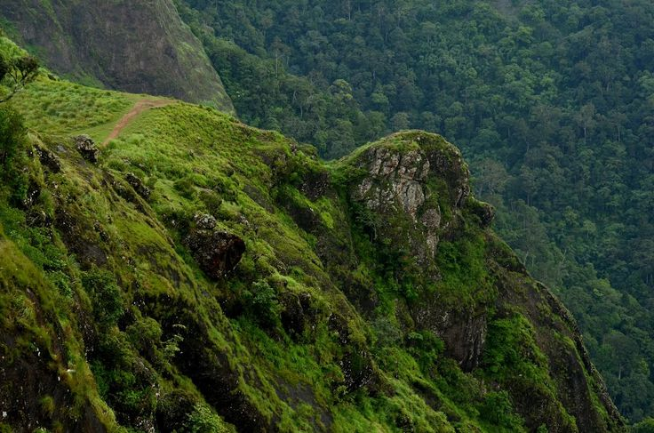 Paruthumpara - Just 25 Kms from Resort. This is a small village placed 6 km away from Peerumedu. The concept behind the name of the destination itself attracts you to this place. 'Parunthu' means eagle. Being at this place, you will get an eagle's view of the green forest and low lying areas.