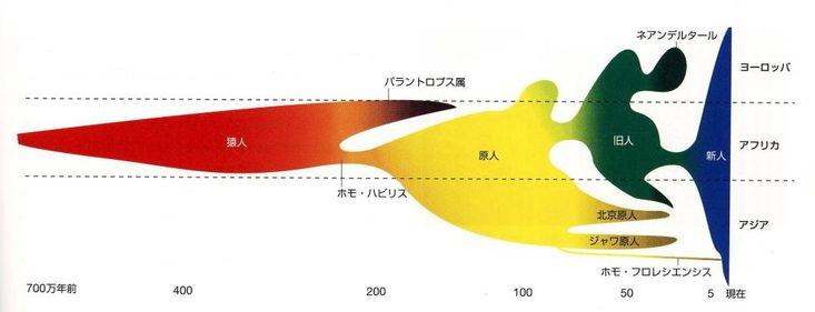 馬場悠男 編「人間性の進化 700万年の軌跡をたどる」