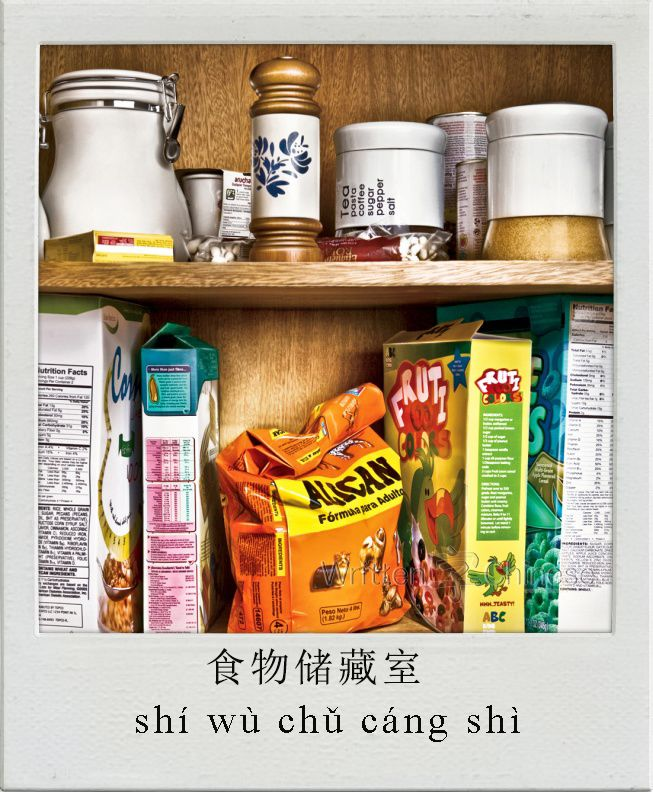 食物储藏室/食物儲藏室 (shí wù chǔ cáng shì) : pantry    You can view more Chinese flashcards at http://www.writtenchinese.com