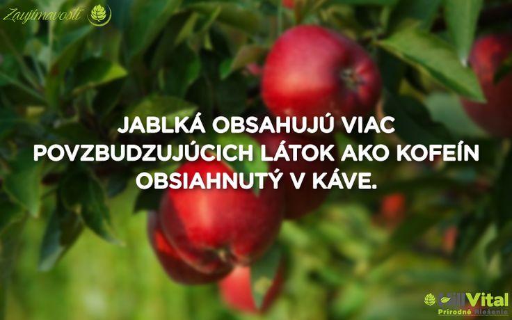 Máte aj vy radi jablká? 🍎 Ak áno, tak tento fakt vás určite bude zaujímať. Vedeli ste o tom? 😮