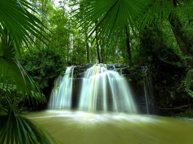 Noosa Hinterland Waterfall, Queensland, Australia