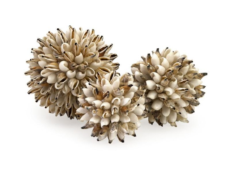 """Sikad Shell Deco Balls in Net - Set of 3 - Set of 4 decorative spheres in varied sizes covered with small shells. Material: 90% Shell, 5% Abaca, 5% Glue. 3.5-4-5""""d."""