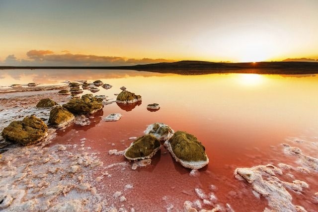 Koyashskoye Salt Lake, Pink Lake in Ukraine