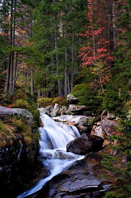 Stream in High Tatras, Slovakia