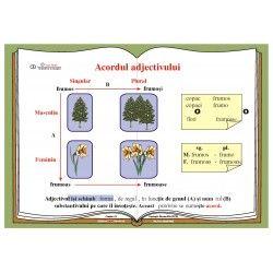 Acordul adjectivului