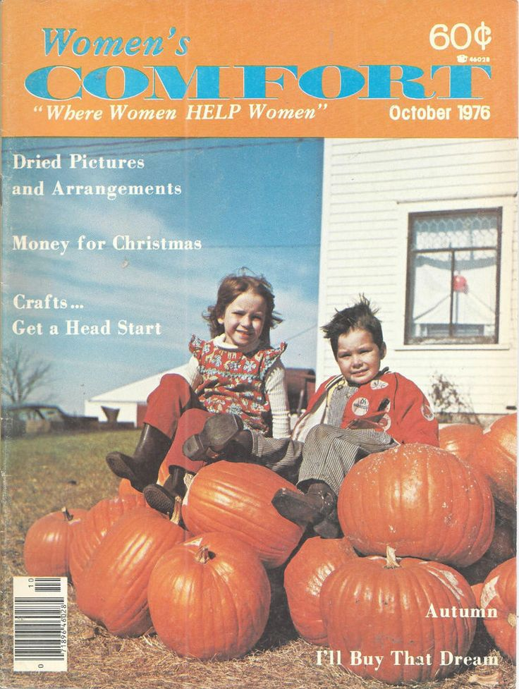 Womens Comfort Magazine 1976 Dried Pictures Do It Yourself Crafts October   #doesnotapply