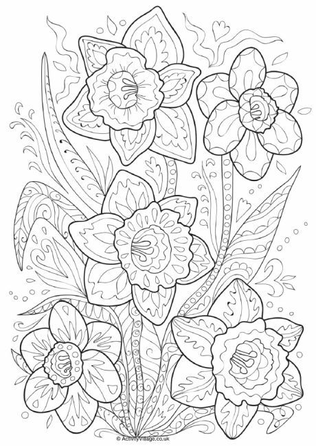 daffodil doodle colouring page - April Coloring Pages Toddlers