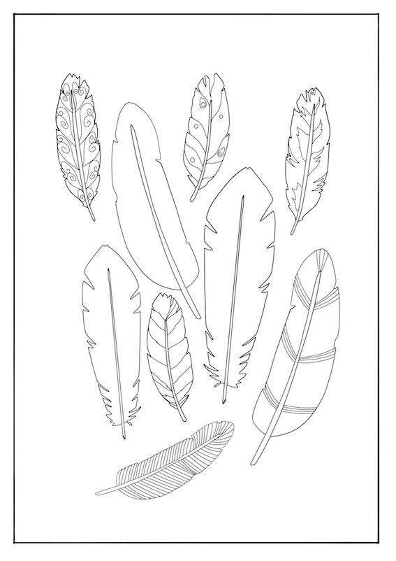 Coloring Techniques For Feathers And Plumage The Coloring Book
