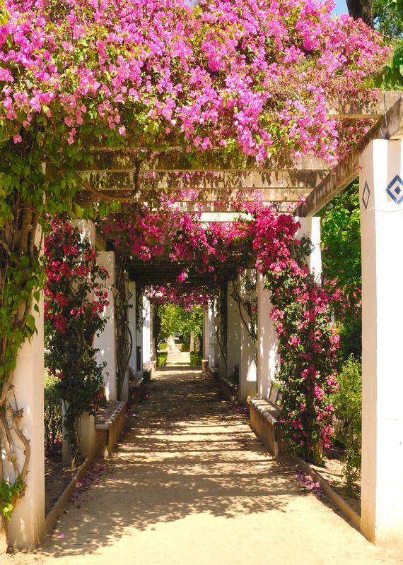 Tuinposter: Doorkijk roze bloemen - Teun's Tuinposters