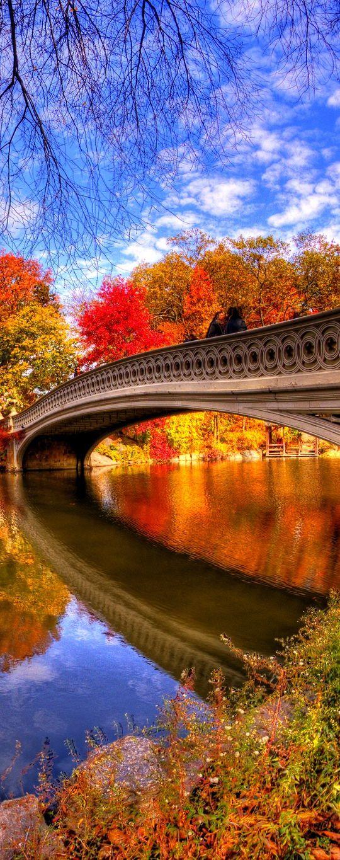 Central Park - New York City, NY