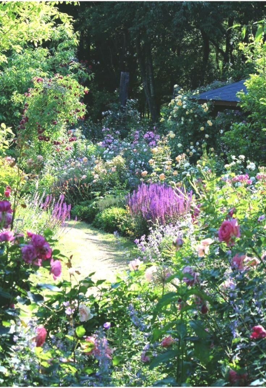 Best Absolutely Free English Garden Perennials Suggestions Gardendesign Absolutely English Free Gard In 2020 Perennial Garden Design English Garden Garden History
