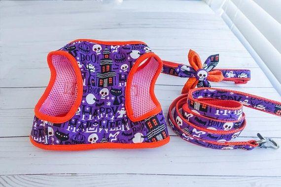 Halloween, skull, pumpkin, ghost, dog harness, Dog leash, dog collar, pet harness leash collar, French bulldog, Pug, Harness and leash set
