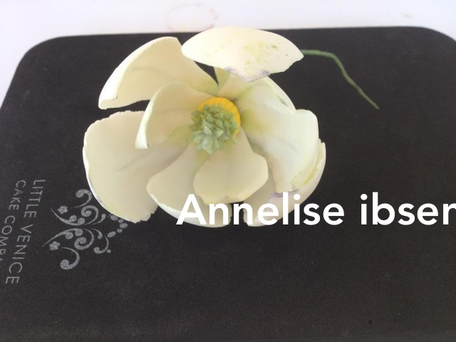Fondant magnolia