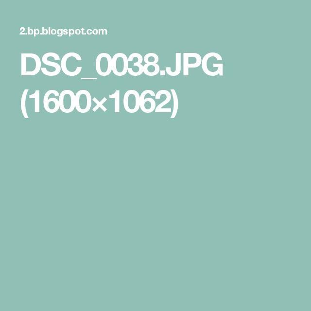 DSC_0038.JPG (1600×1062)