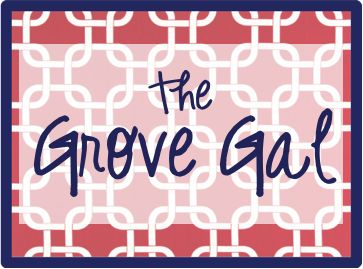 The Grove Gal Blog... tons of Ole Miss tailgating ideas for the Grove! :): Braids Recipes, Cute Ideas, Tailgating Ideas