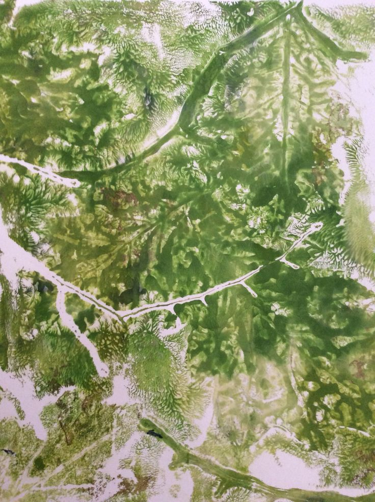 """ Secrets of the Underbrush"" Gelli Ghost Print by Jeanne Turmel"