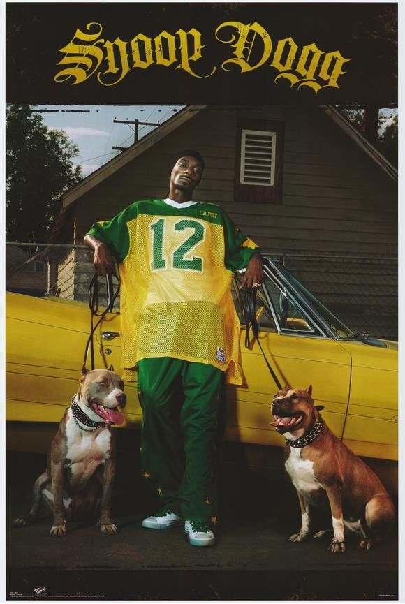 Snoop Dogg 27x40 Movie Poster